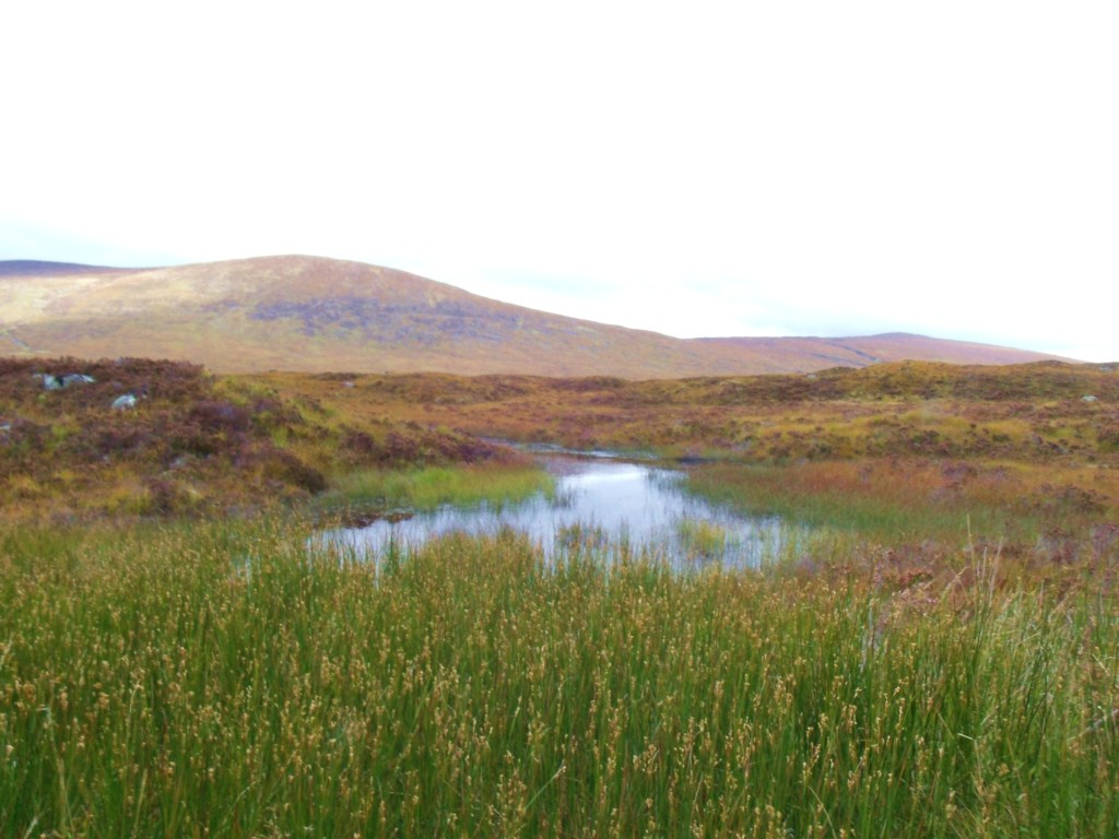 Rannoch Moor Looking East
