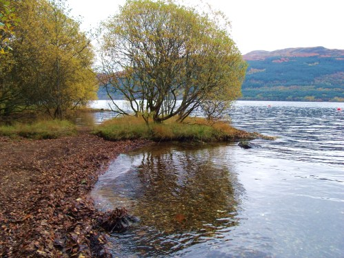 Lochside trail south of  Inversnaid