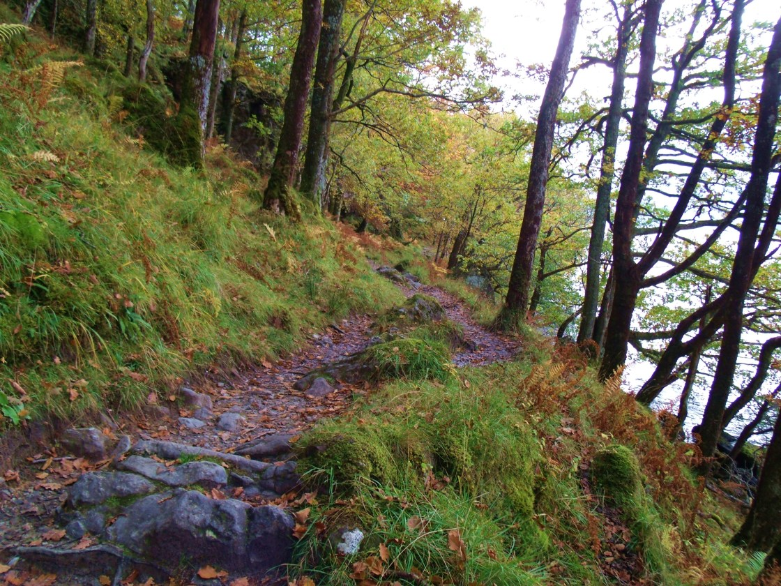 Rocky Trail at Inversnaid