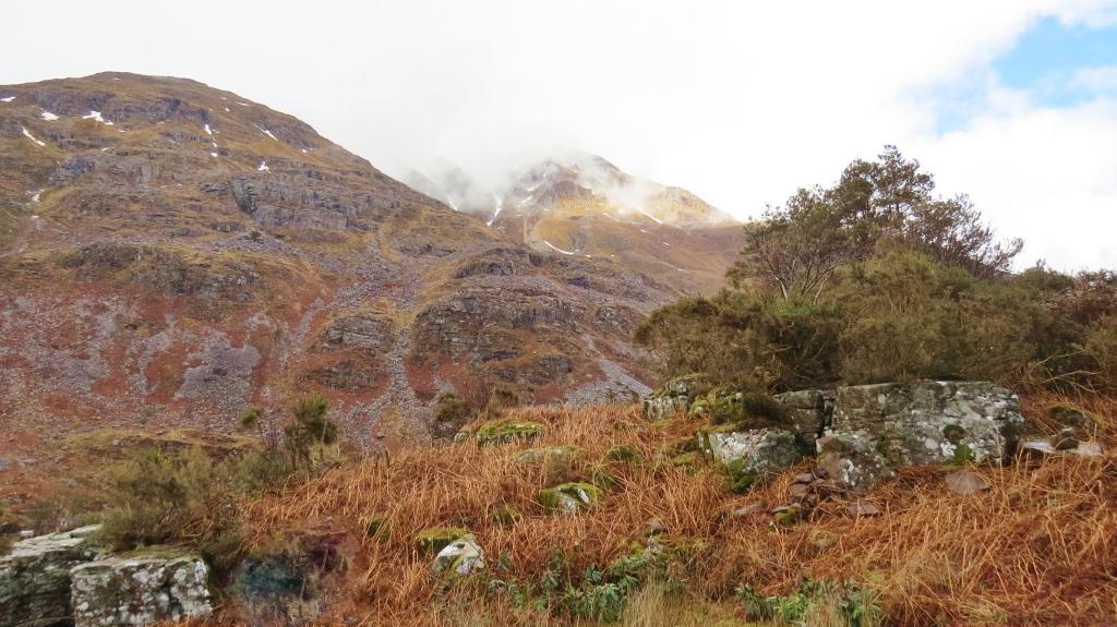 Torridon hillside