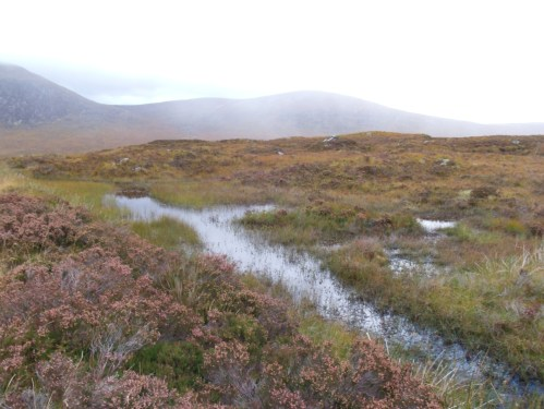 Rivulet On Rannoch Moor Heading To River Etive
