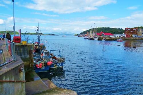 Fishing boats in Oban harbour