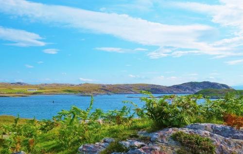 Wildlife in Loch Eatharina