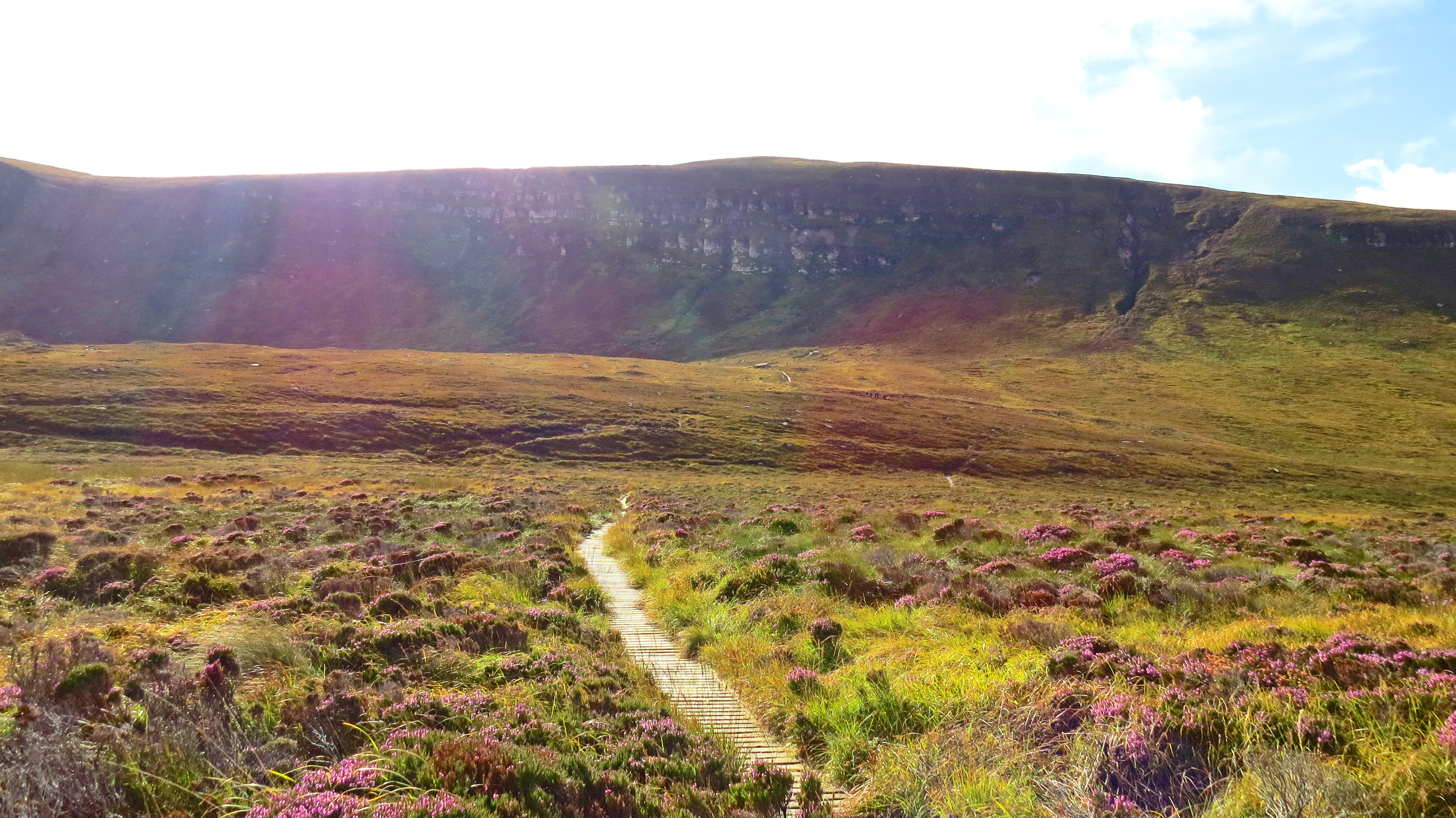 rainbow path