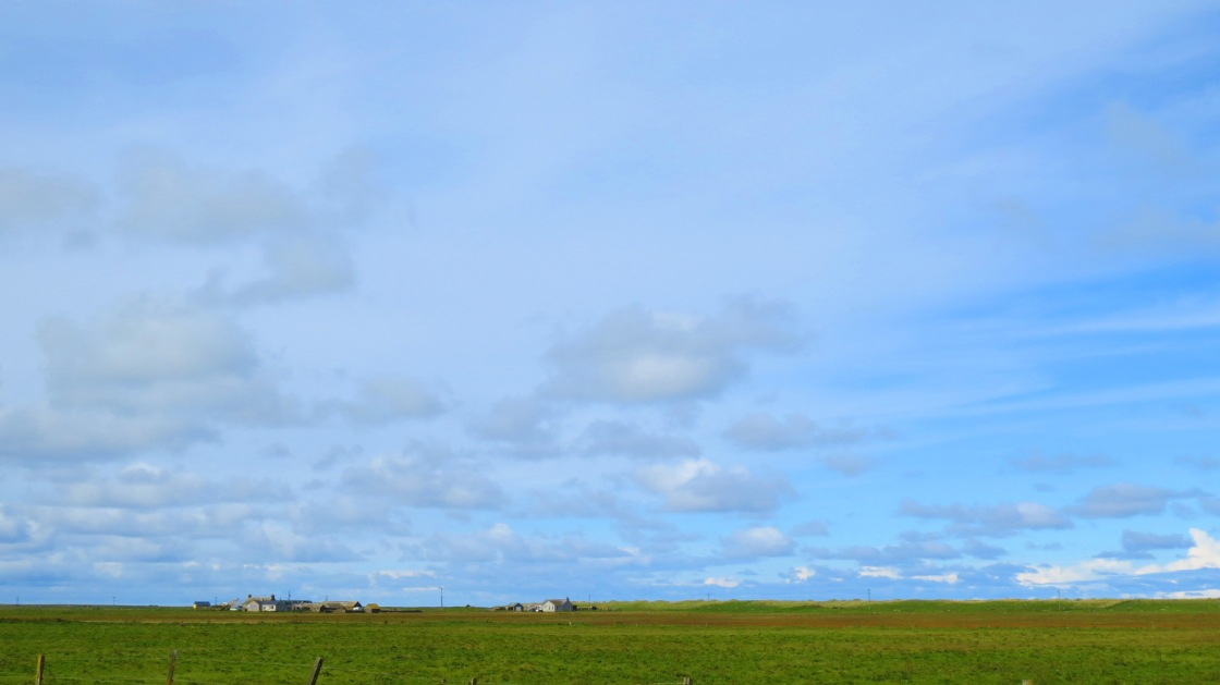 sanday farmland